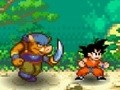 Dragon Ball Fighting